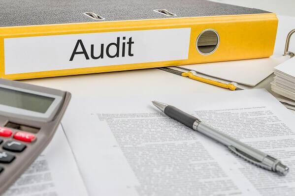 ZPIC audits